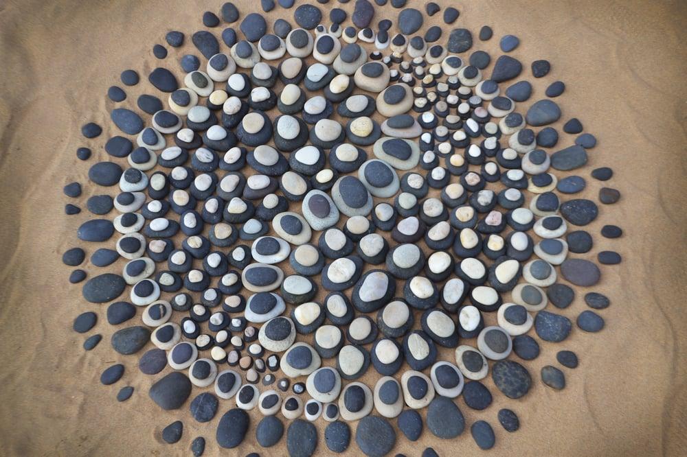 Jon Freeman nature art